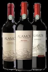 Vinhos surpreendentes da linha Alamos