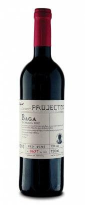 Projectos Baga 2010