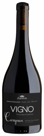 Vigno Carignan 2015